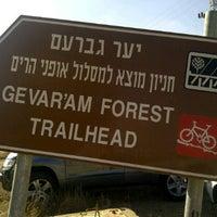 Photo taken at יער גברעם by Hagai P. on 11/12/2011