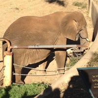 Photo taken at African Elephants by Jae M. on 1/7/2012