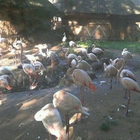 Photo taken at ZOO Jihlava by Petr H. on 9/24/2011
