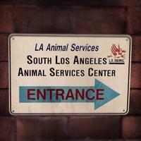south la animal shelter now closed non profit in south la
