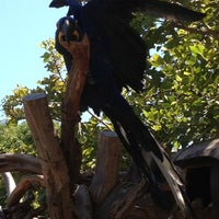 Photo taken at Macaws by Susan E. on 9/3/2012