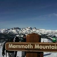 Photo taken at Mammoth Mountain Ski Resort by Nick S. on 1/15/2011