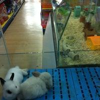 Photo taken at Qian Hu Pet Shop by Yam P. on 8/21/2011