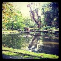 Foto tirada no(a) Parque Terra Nostra por Jorge B. em 10/31/2011