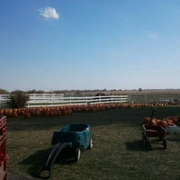 Photo taken at Bart's Farm and Pumpkin Patch by chuck t. on 10/8/2011