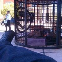 Photo taken at The Coffee Bean & Tea Leaf by Andy S. on 2/14/2012