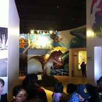 Photo taken at Museo de Historia Natural Ecatepec by Israel D. on 3/25/2012
