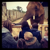 Photo taken at Colchester Zoo by Elliot H. on 5/7/2012