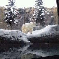 Photo taken at Polar Bear Museum by すーさんぱぱ on 12/17/2011