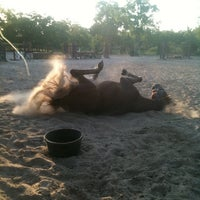 Photo taken at South Shore Sport Horses by Tiffany L. on 11/16/2011
