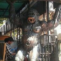 Photo taken at Rainforest Restaurant by Niran V. on 1/7/2012