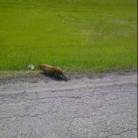 Photo taken at Groundhog Land by Justin V. on 5/13/2012