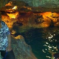 Das Foto wurde bei Cenote San Ignacio von Carlos A. am 12/29/2011 aufgenommen
