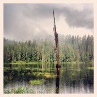 Photo taken at Olympic National Park by Anjali B. on 7/4/2012