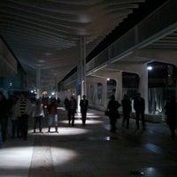Foto tomada en Palmeral de las Sorpresas por Jesús P. el 12/7/2011