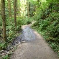 Foto tirada no(a) Forest Park - Wildwood Trail por Meg P. em 8/12/2012