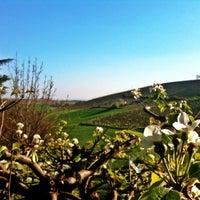 Photo taken at Casorzo by Jacopo C. on 3/31/2012
