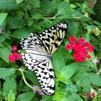 Photo taken at Texas Discovery Gardens by Lhaima J. on 2/15/2012