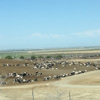 Photo taken at Harris Ranch Cattle Yards by Elizabeth R. on 8/10/2012