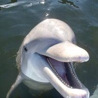 Photo taken at Big Pine Key by Lindsay on 6/16/2012