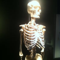 5/27/2012 tarihinde Helior C.ziyaretçi tarafından BODIES...The Exhibition'de çekilen fotoğraf