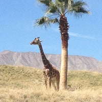 Photo taken at The Living Desert Zoo & Botanical Gardens by Grady B. on 4/3/2012