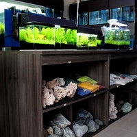 Photo taken at FishPlanet Aquarismo by Joao A. on 5/20/2012