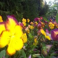 5/4/2012 tarihinde Gölgen G.ziyaretçi tarafından Ağaçlı Turistik Tesisleri'de çekilen fotoğraf