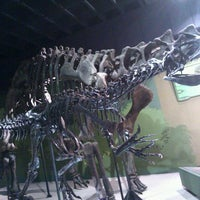 Photo taken at Cleveland Museum of Natural History by Brian K. on 4/22/2012