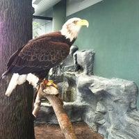 Photo taken at South Carolina Aquarium by Brandon on 8/21/2012