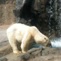 Photo taken at Polar Bear Museum by Terry K. on 6/29/2012