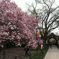 Photo taken at Lagomarcino Hall by BJ F. on 3/21/2012