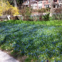 Photo taken at The Blue Lawn - Rosedale by Andy H. on 3/26/2012