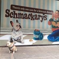 Photo taken at Humane Society of NY by Jonathan L. on 5/10/2012