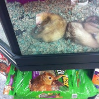 Photo taken at Petco by Courtney P. on 7/23/2011