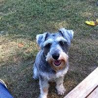 Photo taken at White Rock Lake Dog Park by Raul G. on 10/13/2011