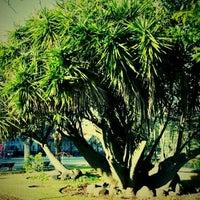 Photo taken at Paço de Arcos Garden by Jose Carlos S. on 1/6/2012