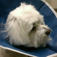 Photo taken at Animal Emergency, Critical Care by Tippy on 12/25/2011