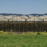 Photo taken at Gum Gully Farm by ** Simon *. on 12/16/2011