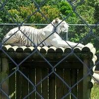 Photo taken at pouakai zoo by donna o. on 1/2/2012