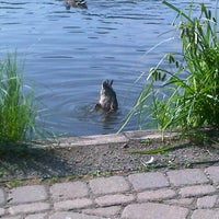 Foto tomada en Verona Park por Iveth R. el 6/28/2012