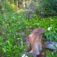 Photo taken at The Theodore Roosevelt Area at Timucuan Preserve by Tim B. on 4/28/2011
