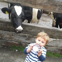 Photo taken at Our Cow Molly Dairy Ice Cream by Our Cow Molly on 5/25/2012