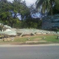 Photo taken at Mamba Village by Betty K. on 11/11/2011