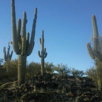 Photo taken at Saguaro hill by George I. on 12/29/2011