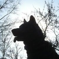 12/30/2011 tarihinde Steve C.ziyaretçi tarafından Balto Statue'de çekilen fotoğraf