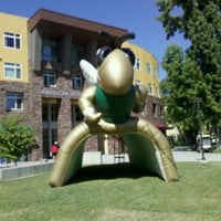 Photo taken at Sac State: American River Courtyard by Victoria M. on 8/26/2011