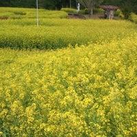 Photo taken at 有明の森フラワー公園 by take2010freedom R. on 4/22/2012