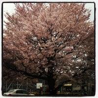 Photo taken at Yokohama by Rayciel A. on 4/11/2012