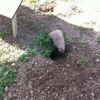 Photo taken at Prairie Dog Park by John S. on 9/8/2012